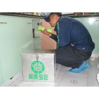 上海专业除虫、杀虫服务